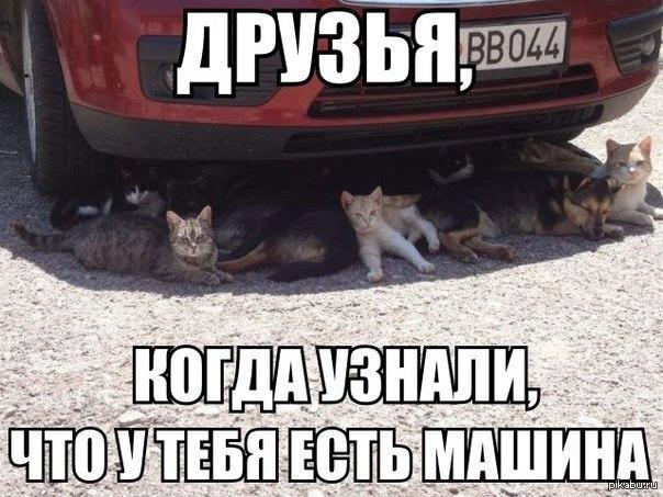 какие машины есть: