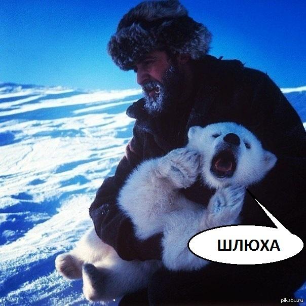 Толстые куртизанки за 40 лет в москве 20 фотография