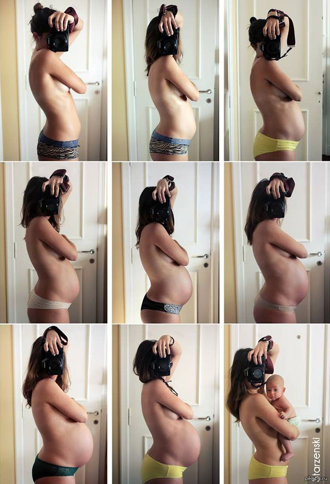 Все животики беременных