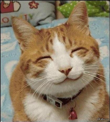 я рад что ты улыбаешься картинки