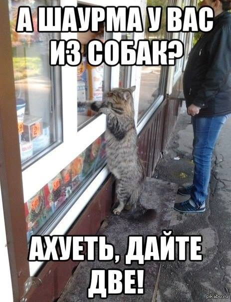 http://s.pikabu.ru/post_img/2013/10/26/8/1382789068_2063332951.jpg