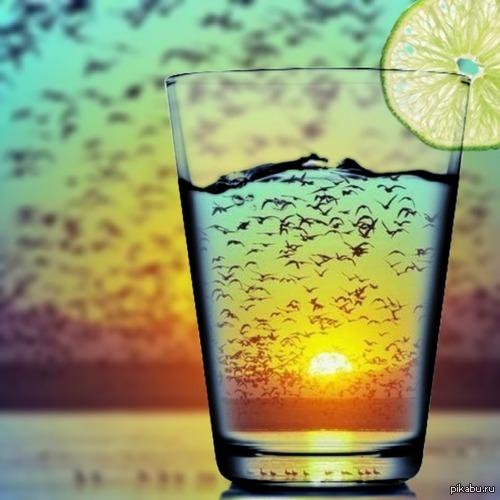 Фото заката через стакан   стакан, Фото, закат