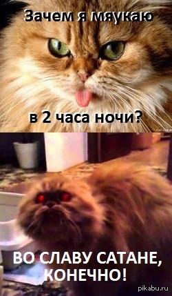 http://s.pikabu.ru/post_img/2013/11/13/7/1384334682_11913142.jpg