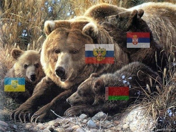 Украина подготовила документы к вступлению в Таможенный союз