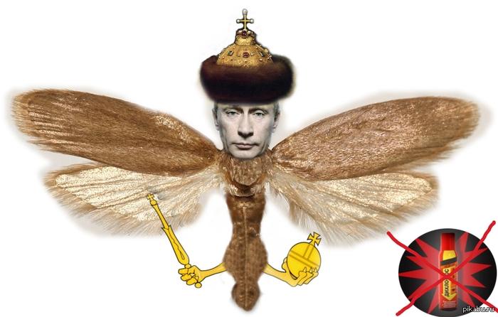 Переговоры о поставках Украине оружия продолжаются, - Бюро нацбезопасности Польши - Цензор.НЕТ 9763
