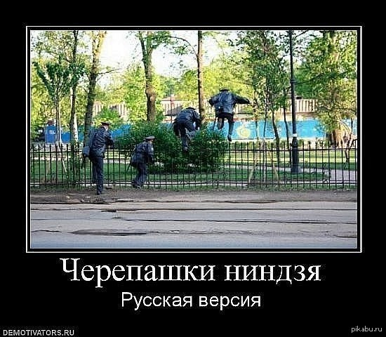 Черепашки ниндзя картинки приколы ...: pictures11.ru/cherepashki-nindzya-kartinki-prikoly.html