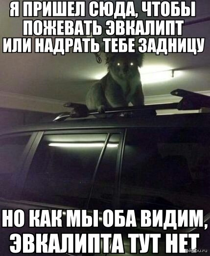 http://s.pikabu.ru/post_img/2014/01/07/8/1389095037_107466441.jpg