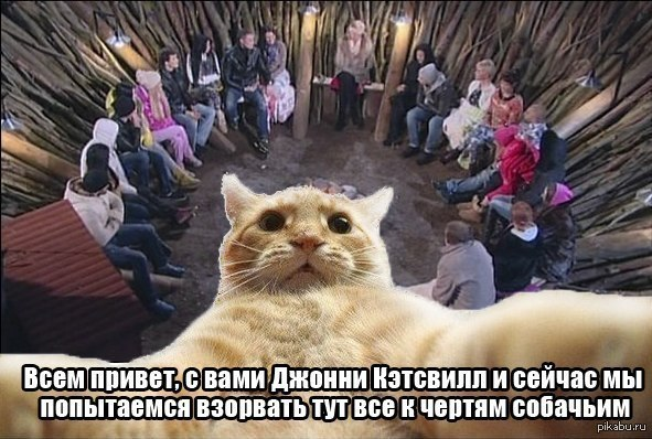http://s.pikabu.ru/post_img/2014/01/14/8/1389699904_1812701168.jpg