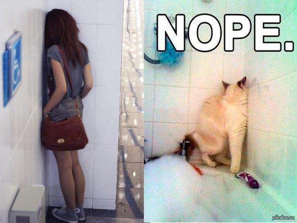 Девушка не хочет кота