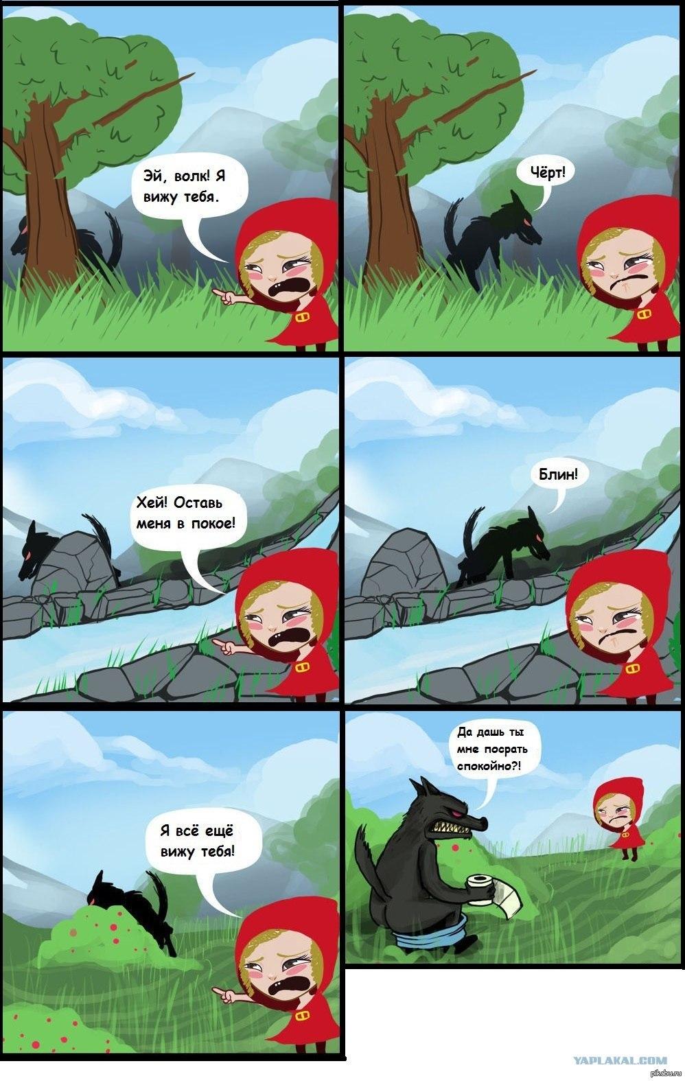 Смешные волки картинки 9 фотография