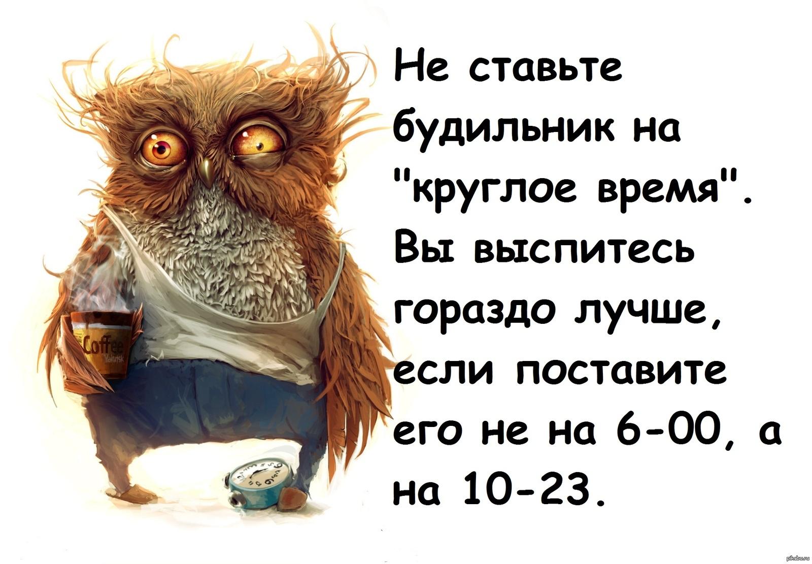для картинки детей учитель сова