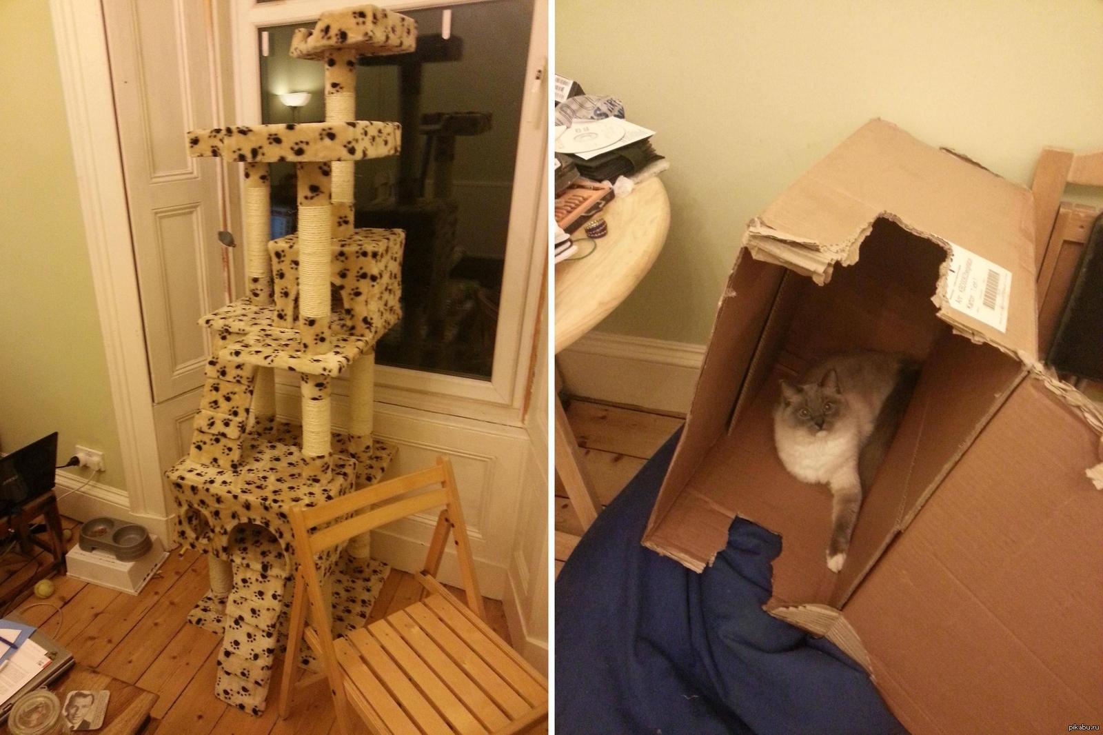 Подарки с кошками своими руками