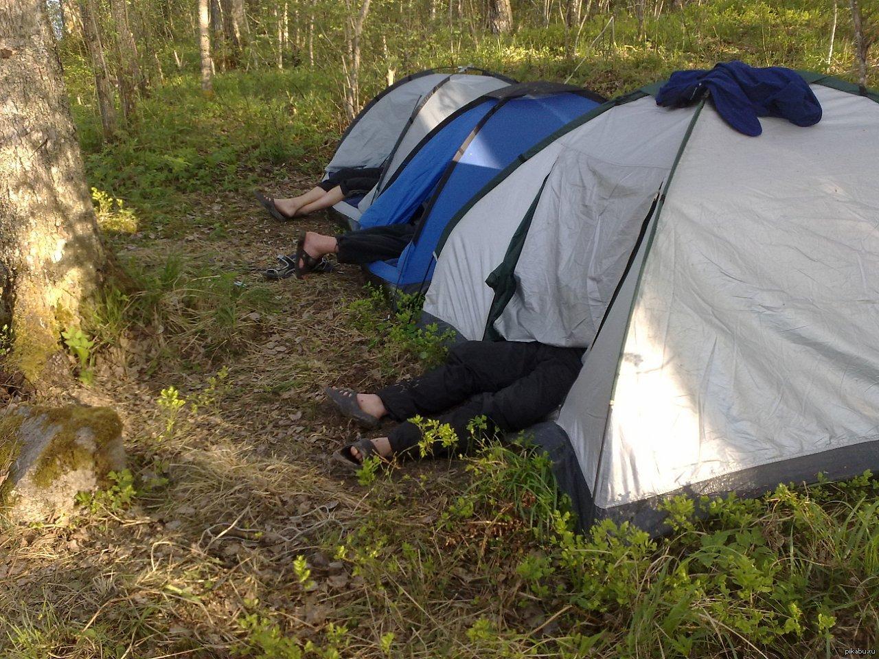 Сех в палатке фото 20 фотография