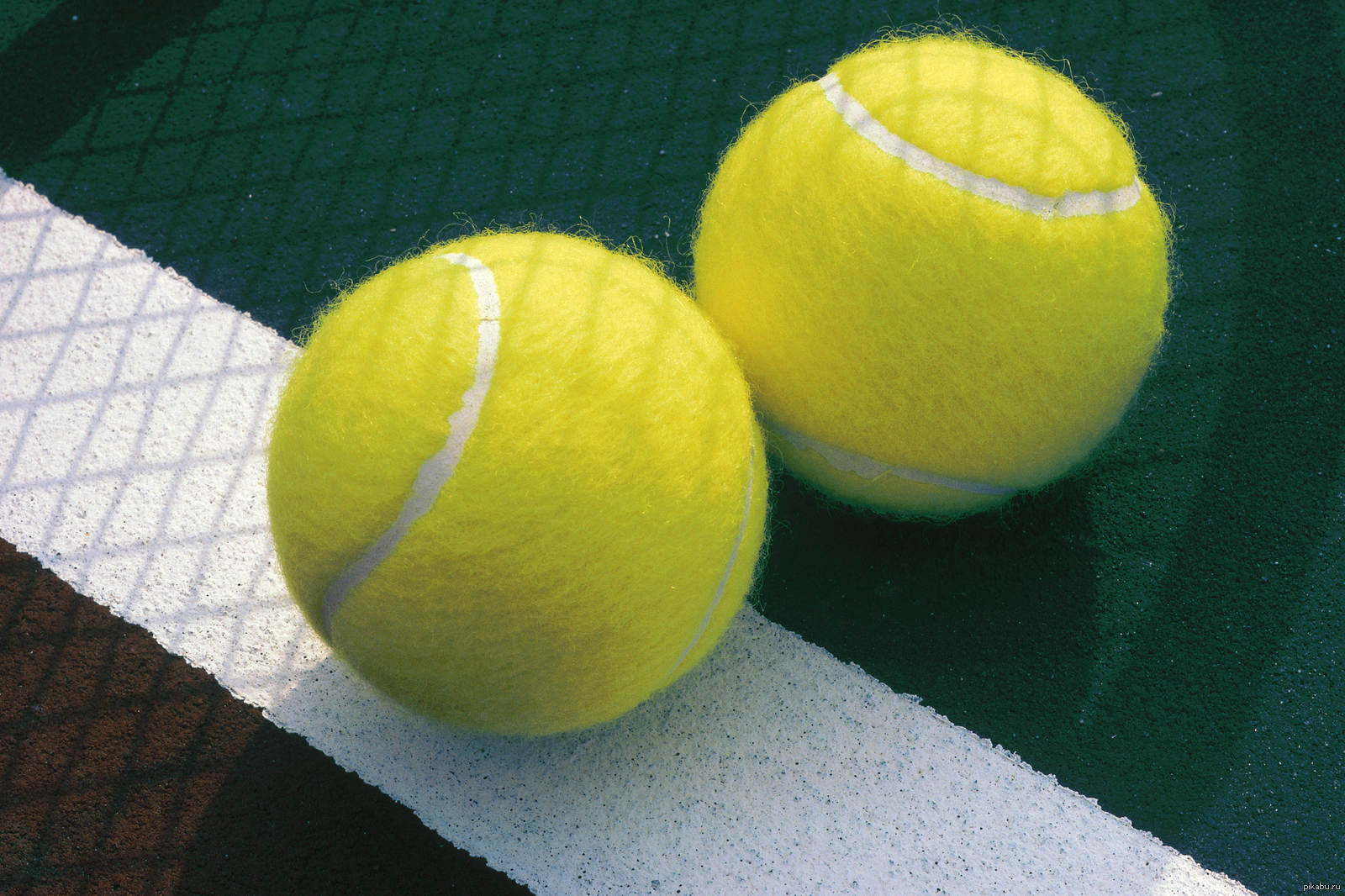 Теннисный мяч в попе фото 14 фотография