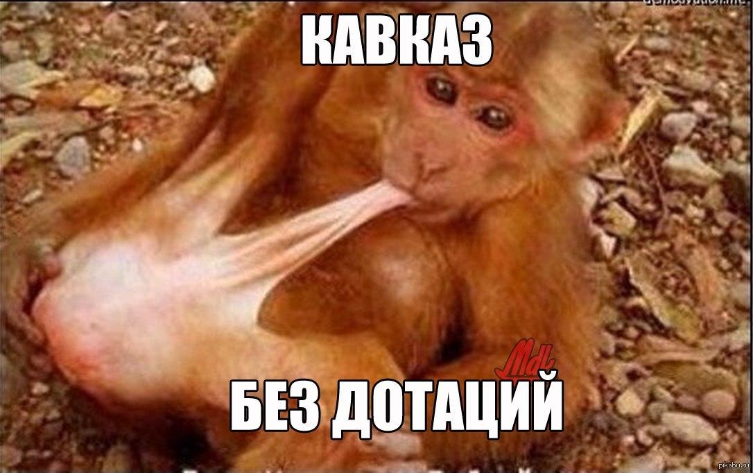 Спяшие голышом девушки из кавказа только кавказ 18 фотография