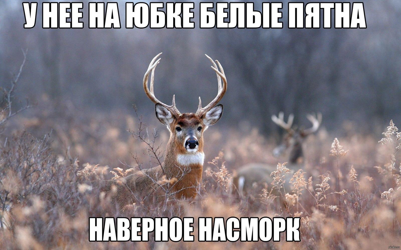 1389865982_383901593.jpg