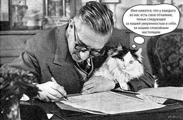 cat in the rain ernest hemingway essay cat in the rain by ernest hemingway essay sample