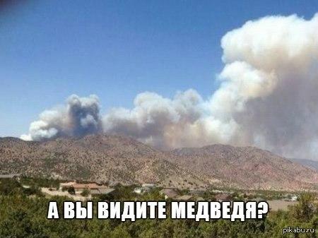 http://s.pikabu.ru/post_img/2013/12/31/9/1388499734_1783977545.jpg